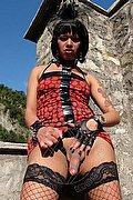 San Giorgio Di Nogaro Trans Escort Drielly Riuston Pornostar 329 3405776 foto hot 12