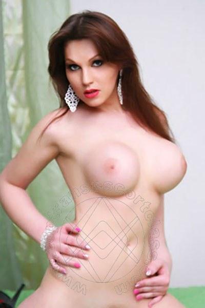 Veronica Italianissima  BOLOGNA 380 1387176